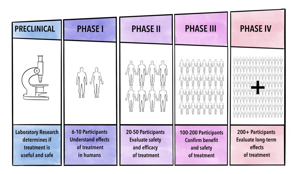 Different stages of clinical trials starting at the clinical pre-clinical stage, and then proceeding to human testing with increasing number of participants at each stage.